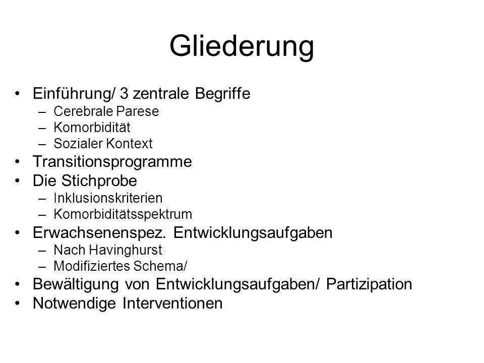 Gliederung Einführung/ 3 zentrale Begriffe Transitionsprogramme