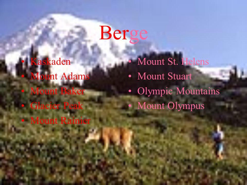 Berge Kaskaden Mount Adams Mount Baker Glacier Peak Mount Rainier