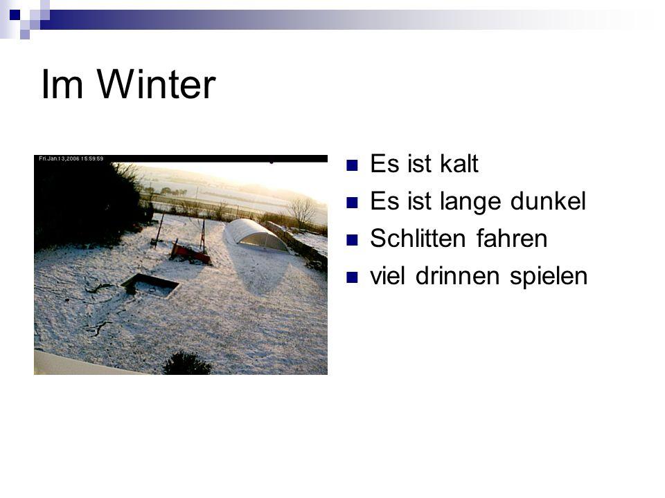 Im Winter Es ist kalt Es ist lange dunkel Schlitten fahren