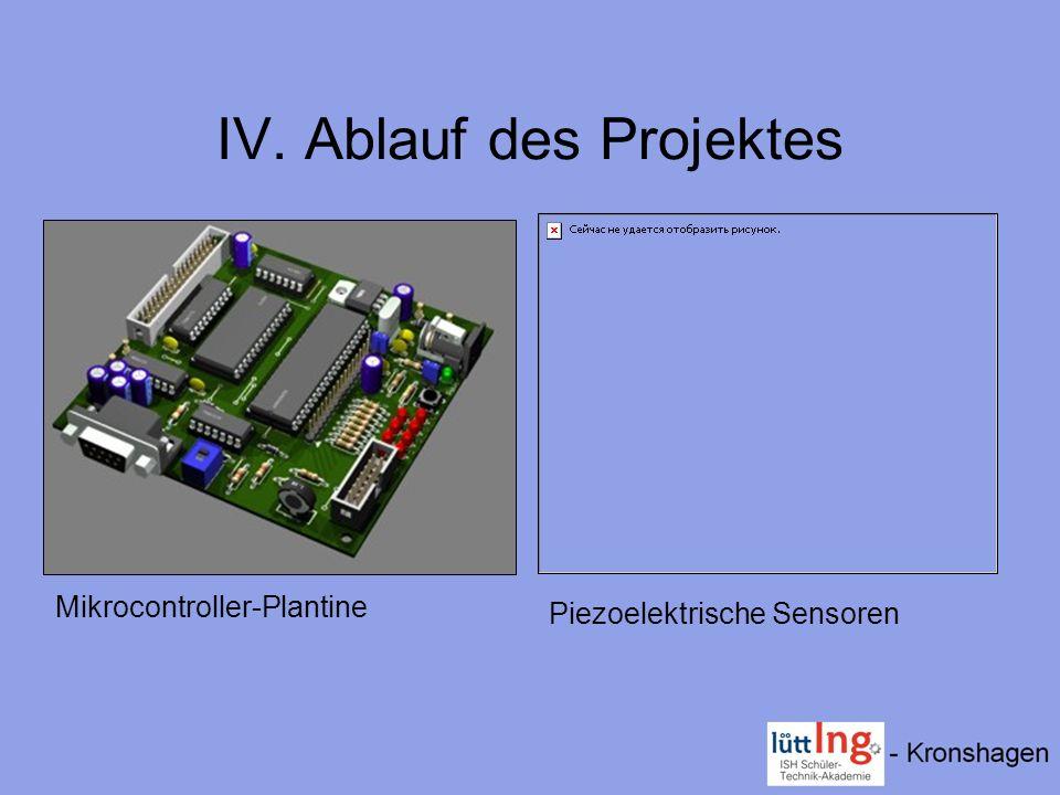 IV. Ablauf des Projektes
