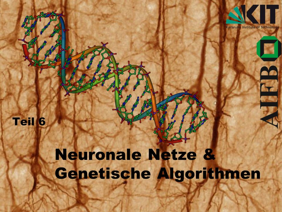 Neuronale Netze & Genetische Algorithmen