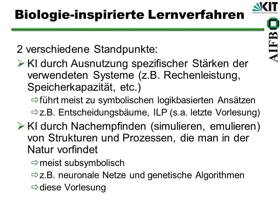 Biologie-inspirierte Lernverfahren