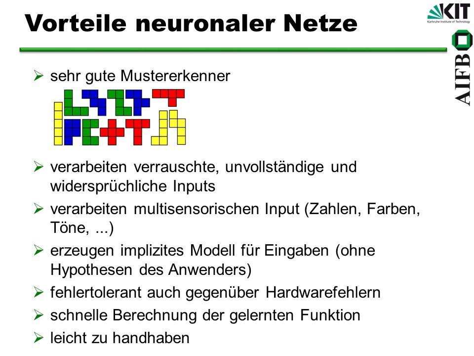 Vorteile neuronaler Netze