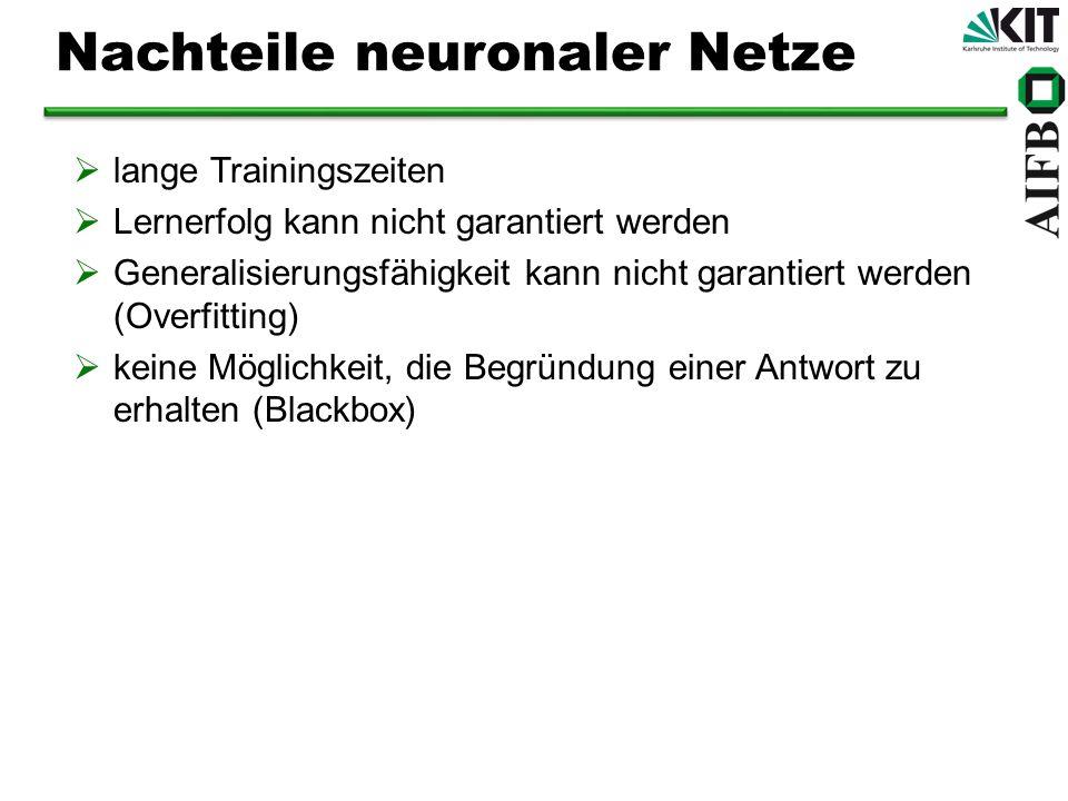 Nachteile neuronaler Netze