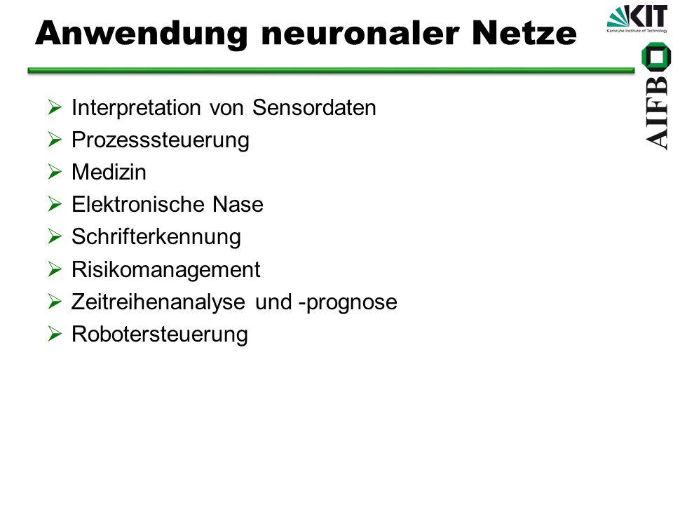Anwendung neuronaler Netze