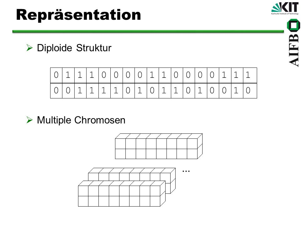 Repräsentation Diploide Struktur 0 1 1 1 0 0 0 0 1 1 0 0 0 0 1 1 1