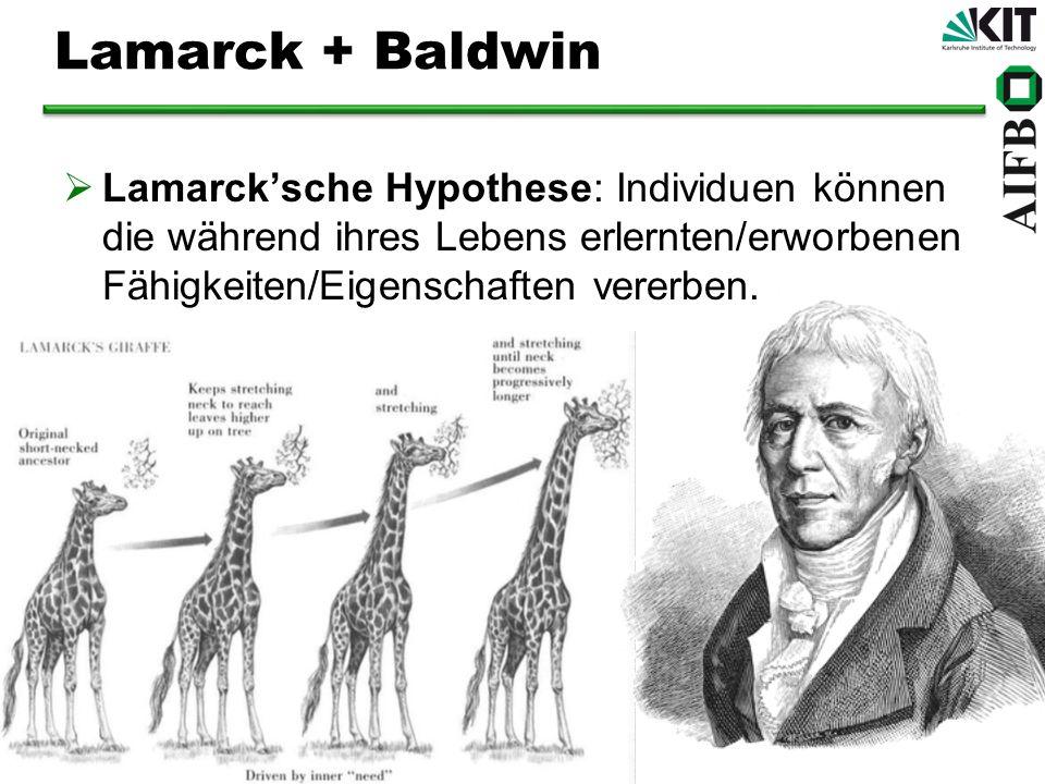 Lamarck + Baldwin Lamarck'sche Hypothese: Individuen können die während ihres Lebens erlernten/erworbenen Fähigkeiten/Eigenschaften vererben.