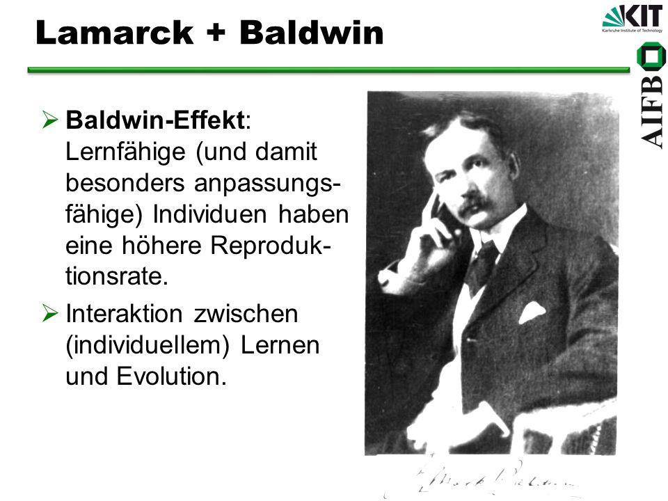 Lamarck + Baldwin Baldwin-Effekt: Lernfähige (und damit besonders anpassungs- fähige) Individuen haben eine höhere Reproduk- tionsrate.