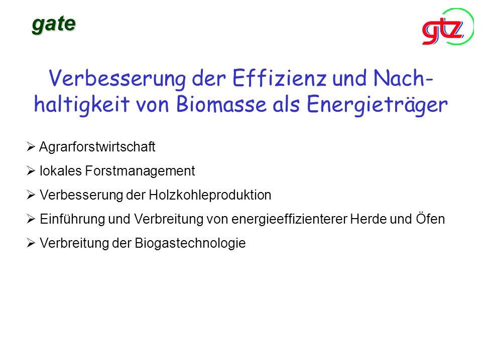 gate Verbesserung der Effizienz und Nach- haltigkeit von Biomasse als Energieträger. Agrarforstwirtschaft.