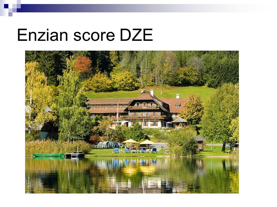 Enzian score DZE