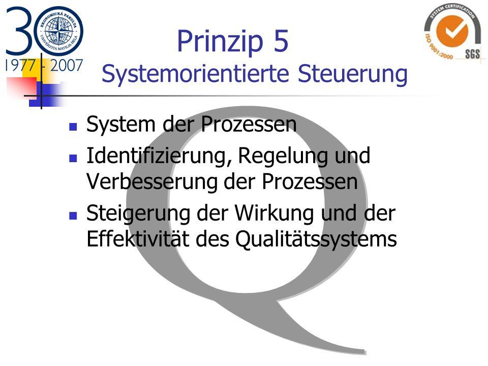 Prinzip 5 Systemorientierte Steuerung