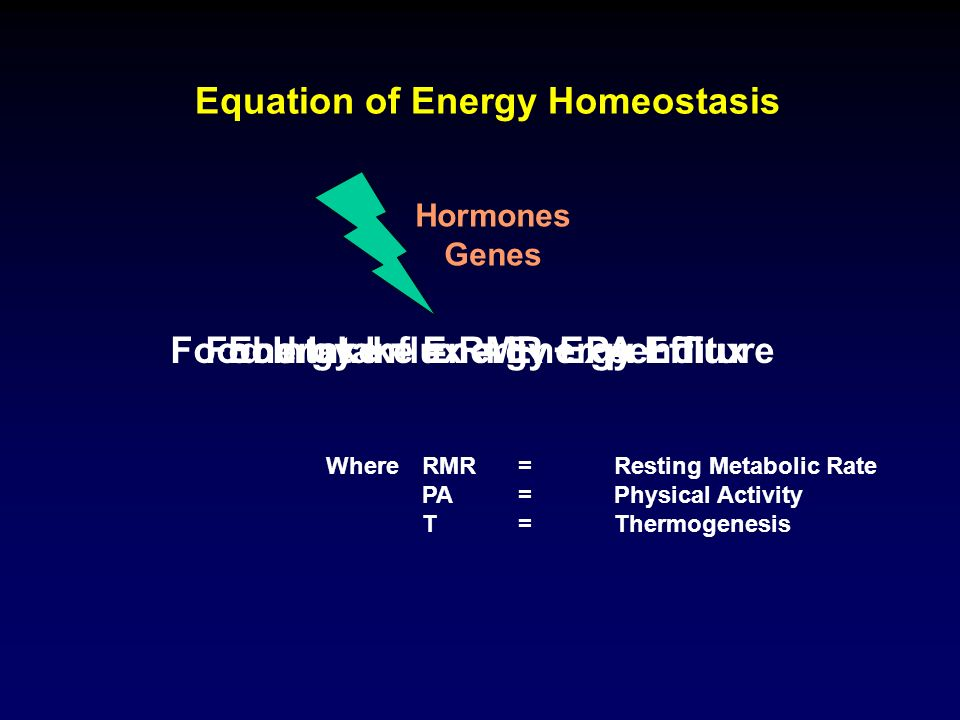 Equation of Energy Homeostasis Energy Influx = Energy Efflux