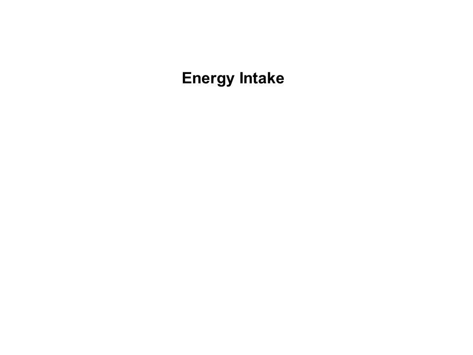 Energy Intake