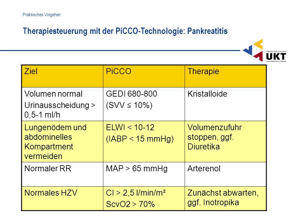 Therapiesteuerung mit der PiCCO-Technologie: Pankreatitis