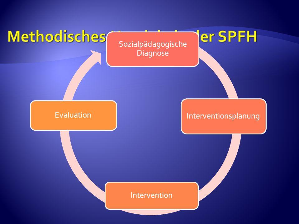 Methodisches Handeln in der SPFH