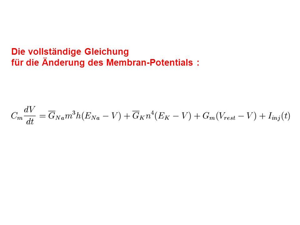 Die vollständige Gleichung