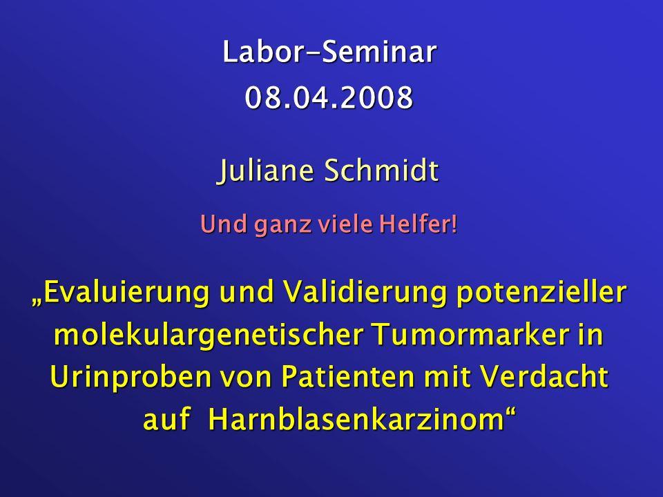 Labor-Seminar 08.04.2008 Juliane Schmidt Und ganz viele Helfer!
