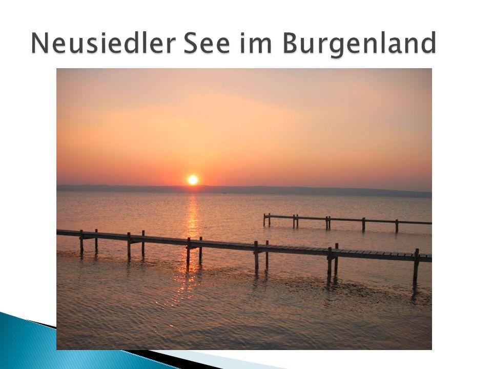 Neusiedler See im Burgenland
