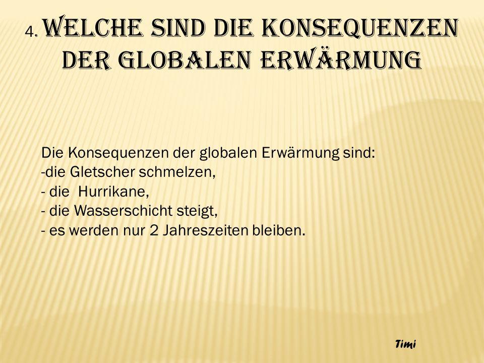 4. Welche sind die Konsequenzen der globalen Erwärmung