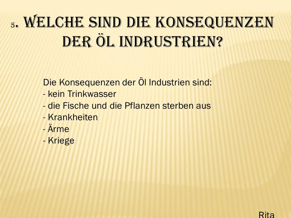 5. Welche sind die Konsequenzen der Öl Indrustrien