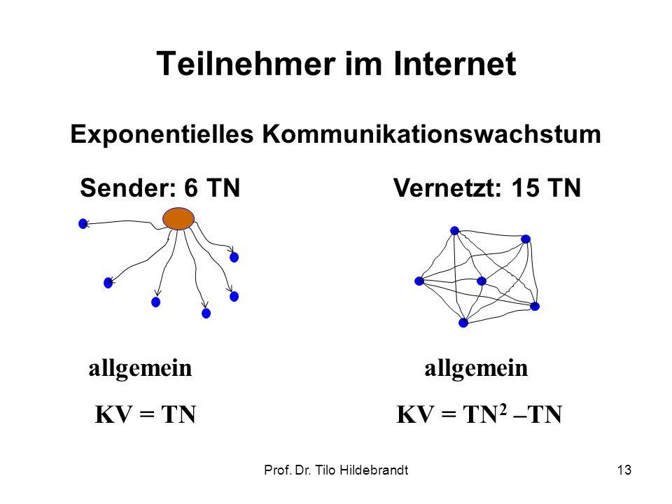 Teilnehmer im Internet