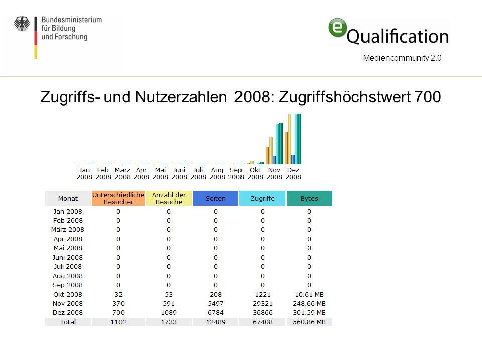 Zugriffs- und Nutzerzahlen 2008: Zugriffshöchstwert 700