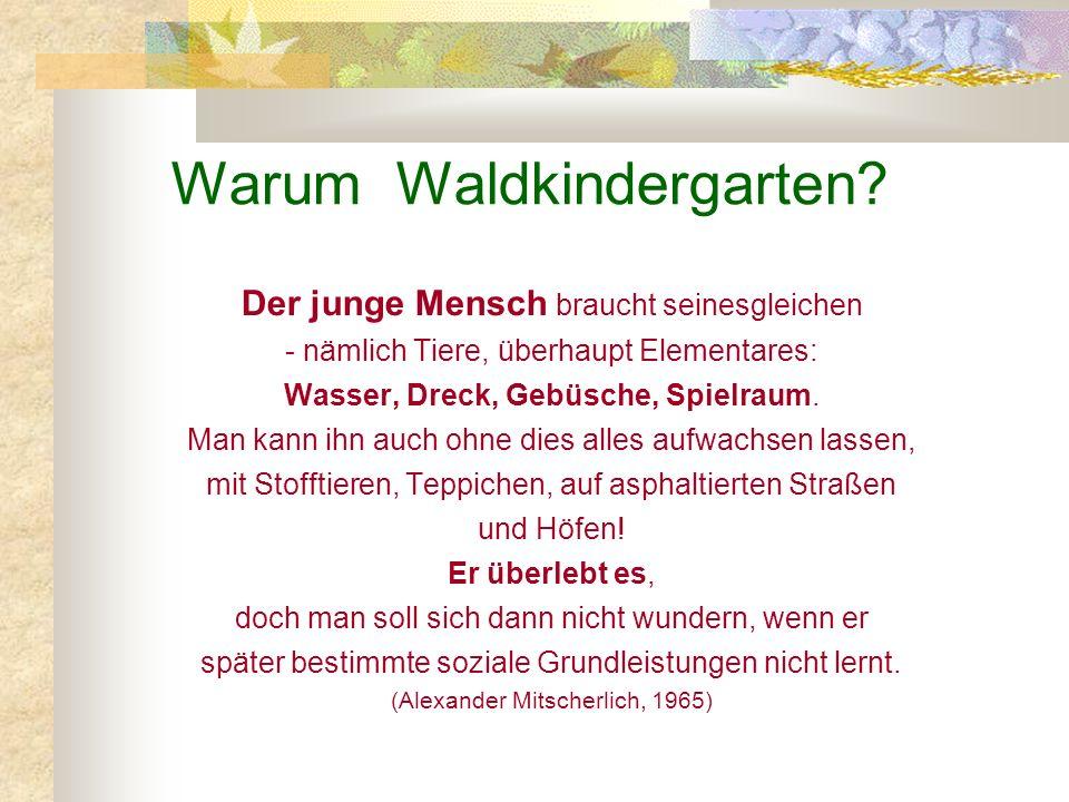 Warum Waldkindergarten
