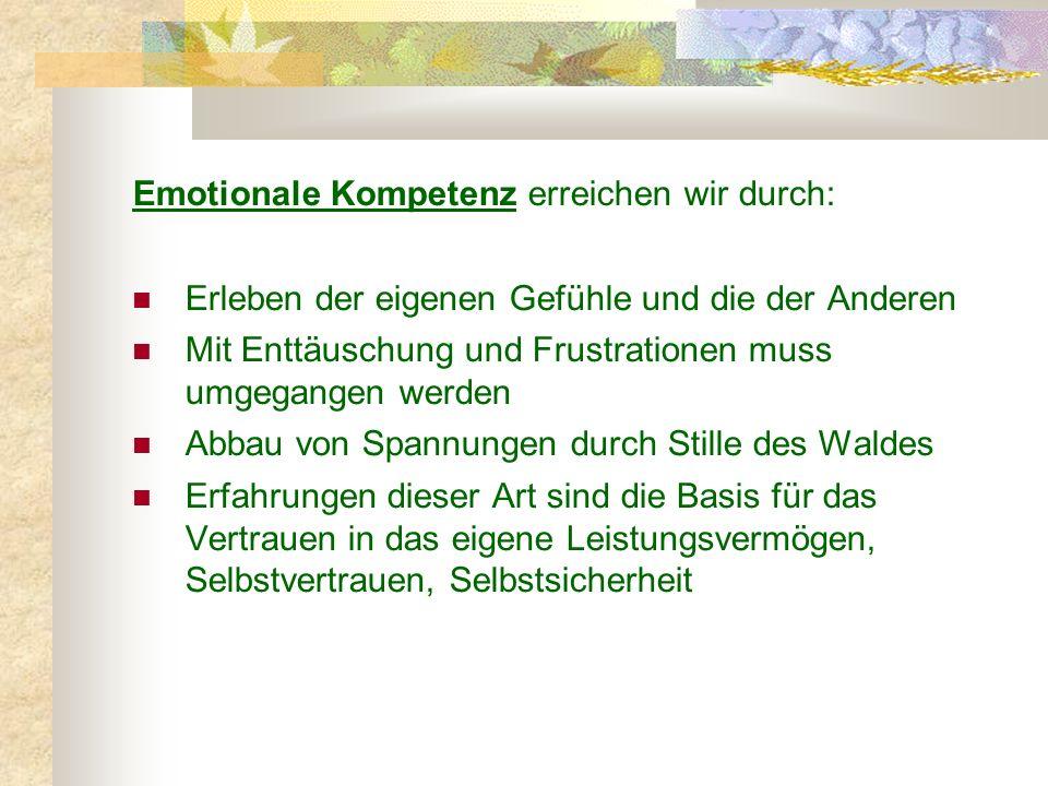 Emotionale Kompetenz erreichen wir durch: