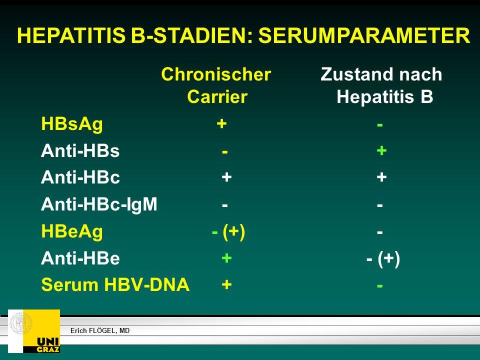 HEPATITIS B-STADIEN: SERUMPARAMETER