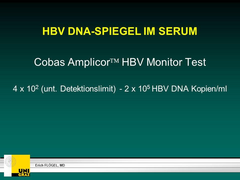 HBV DNA-SPIEGEL IM SERUM