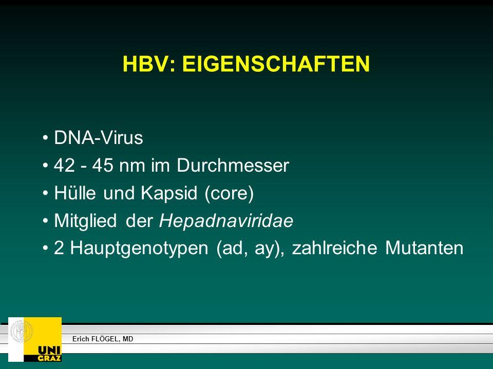 HBV: EIGENSCHAFTEN DNA-Virus 42 - 45 nm im Durchmesser