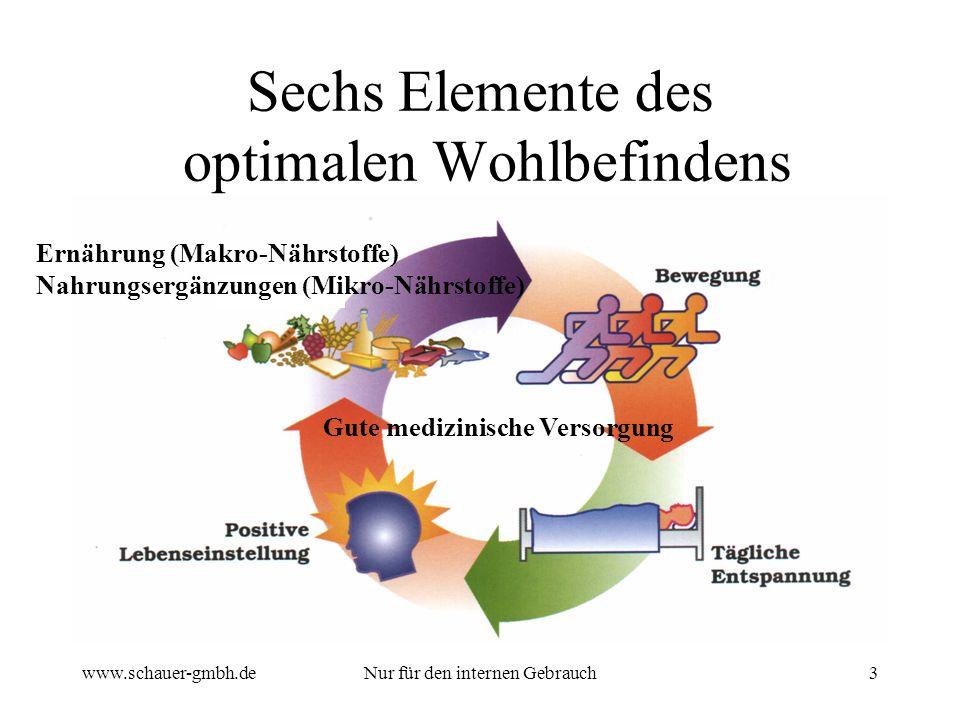 Sechs Elemente des optimalen Wohlbefindens