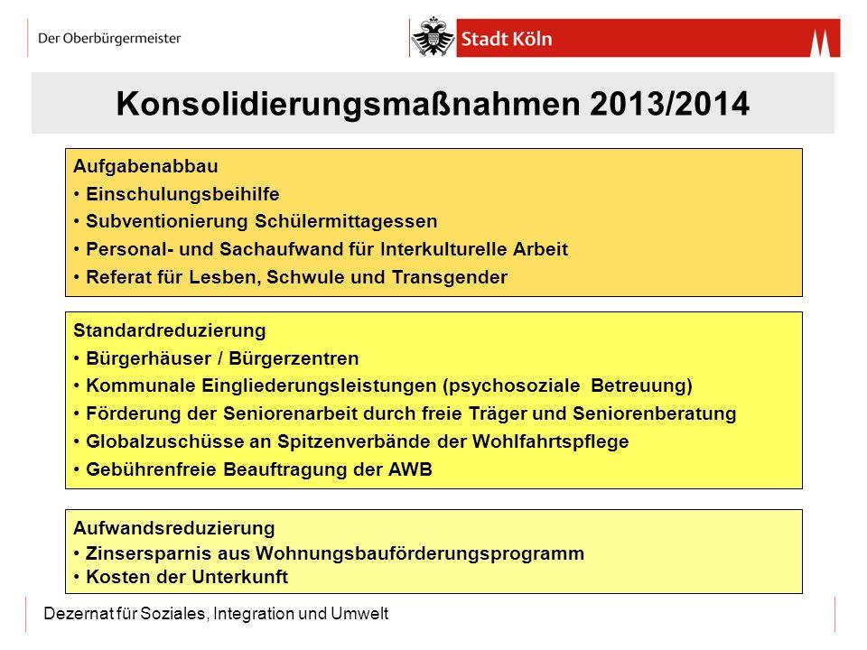 Konsolidierungsmaßnahmen 2013/2014