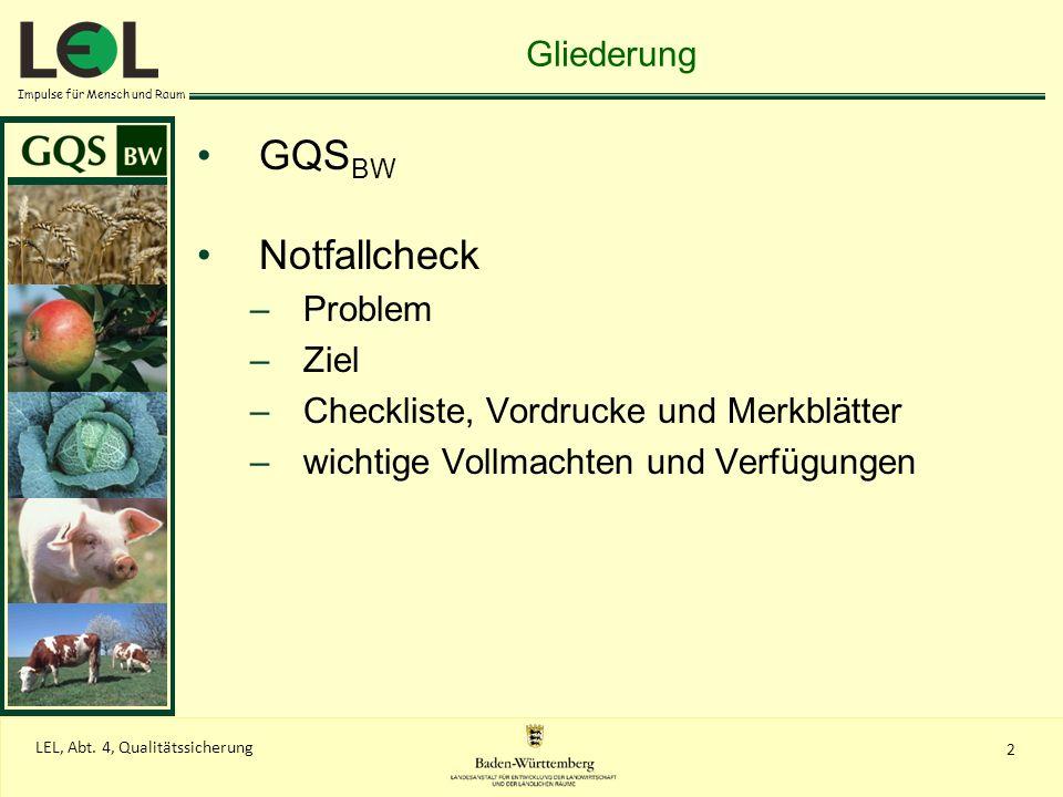 GQSBW Notfallcheck Gliederung Problem Ziel