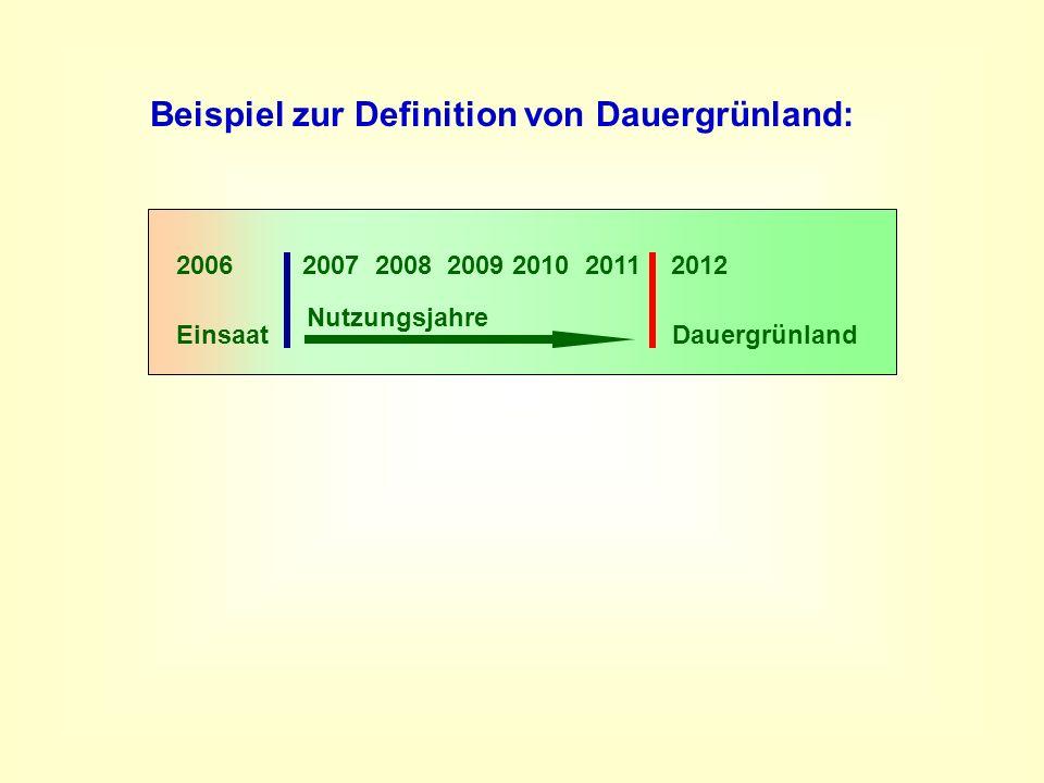 Beispiel zur Definition von Dauergrünland: