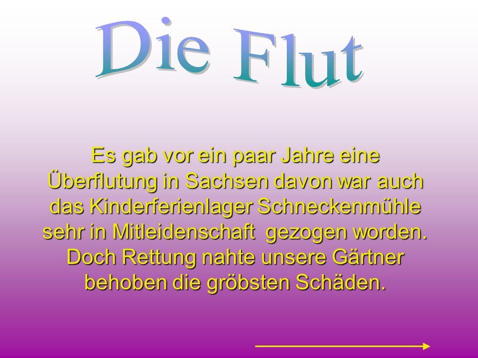 Die Flut