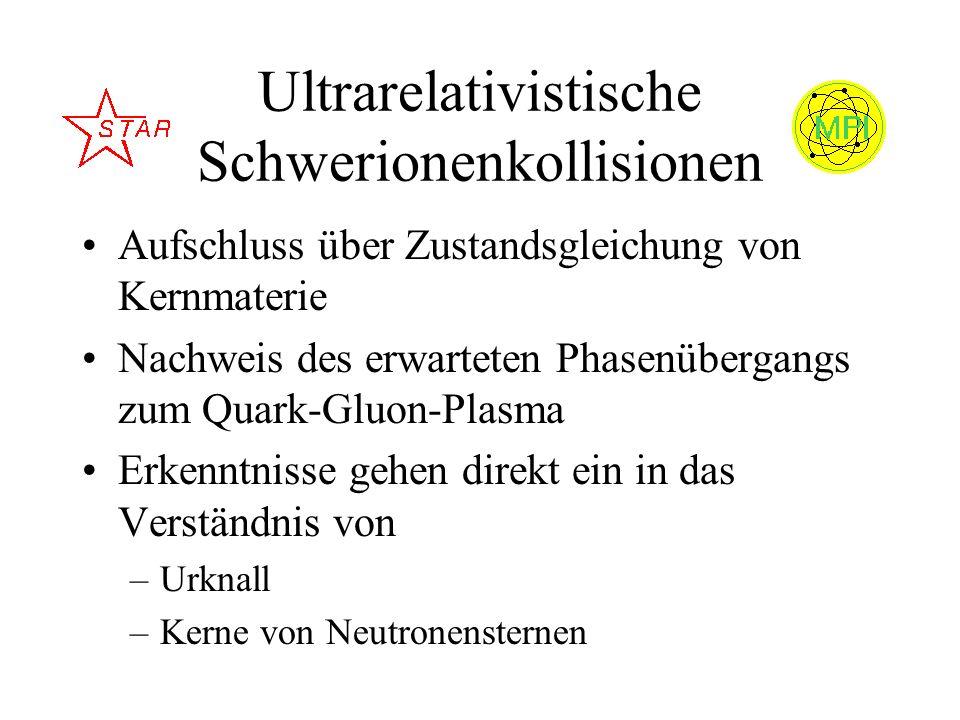 Ultrarelativistische Schwerionenkollisionen