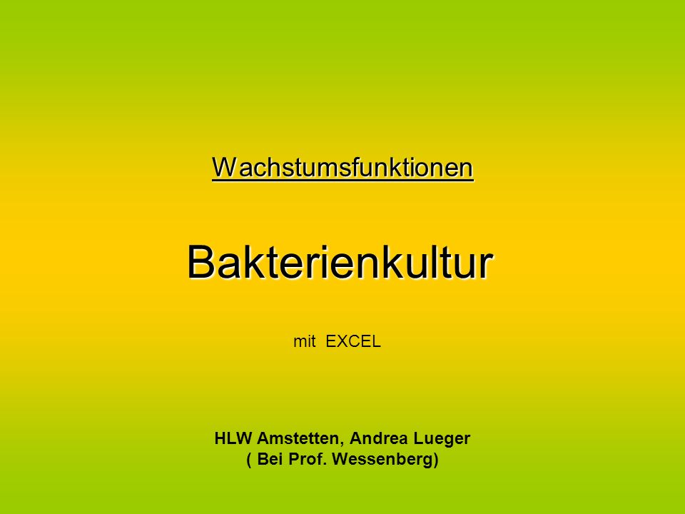 HLW Amstetten, Andrea Lueger ( Bei Prof. Wessenberg)