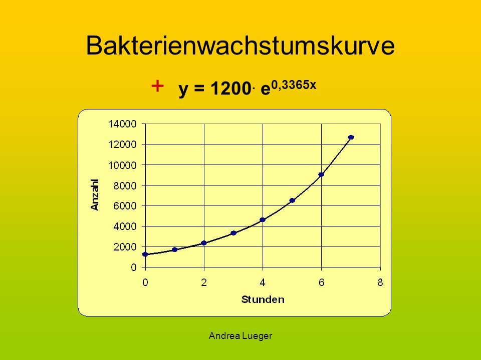 Bakterienwachstumskurve
