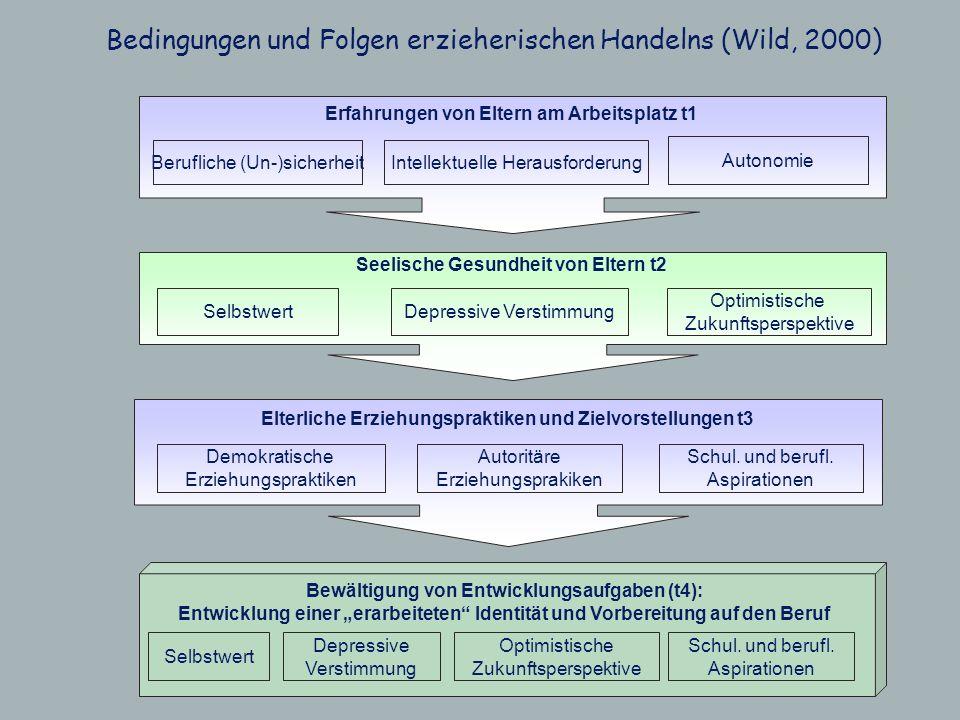 Bedingungen und Folgen erzieherischen Handelns (Wild, 2000)