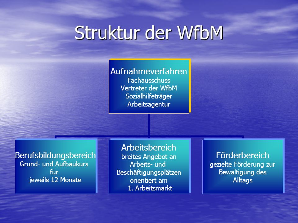 Struktur der WfbM