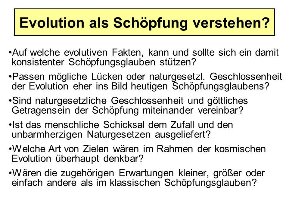Evolution als Schöpfung verstehen