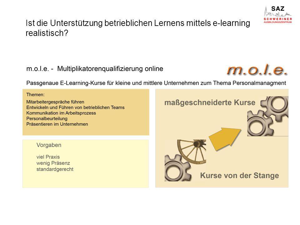 Ist die Unterstützung betrieblichen Lernens mittels e-learning realistisch