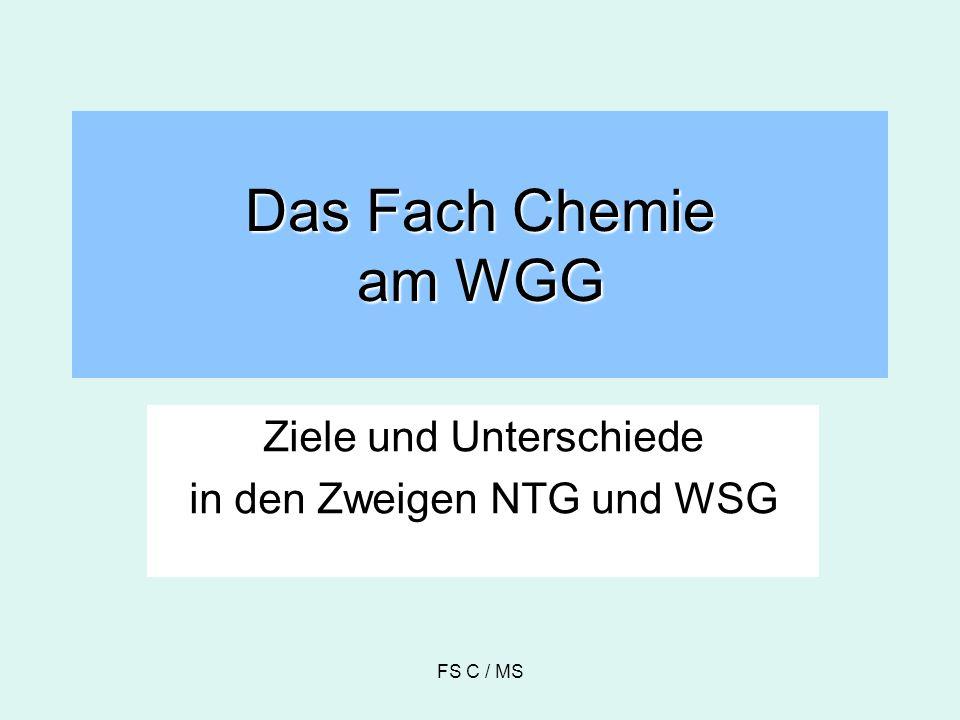 Ziele und Unterschiede in den Zweigen NTG und WSG