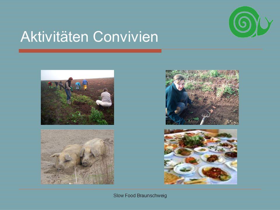 Aktivitäten Convivien