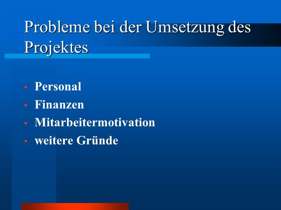 Probleme bei der Umsetzung des Projektes