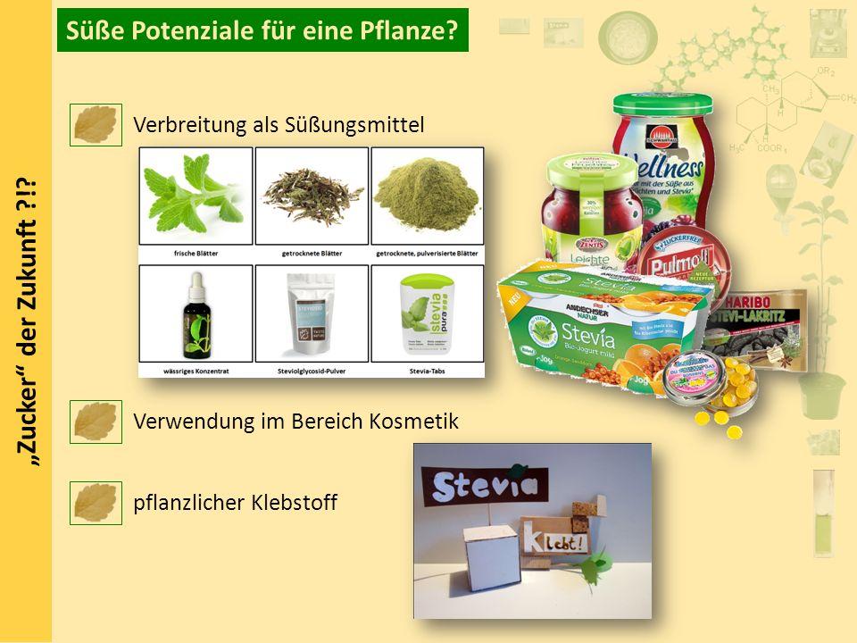 Süße Potenziale für eine Pflanze