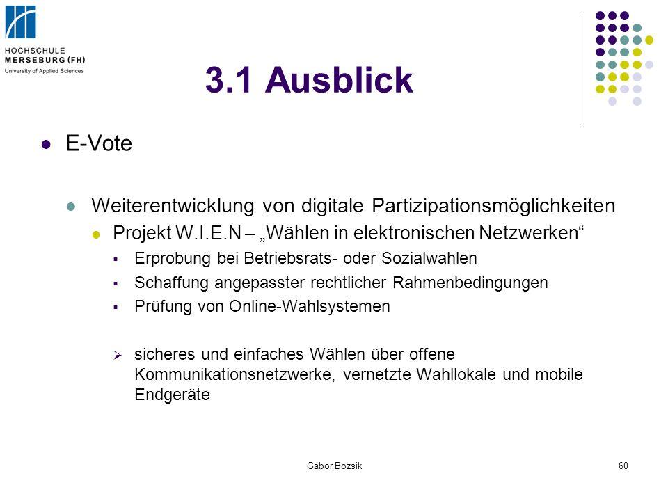 """3.1 Ausblick E-Vote. Weiterentwicklung von digitale Partizipationsmöglichkeiten. Projekt W.I.E.N – """"Wählen in elektronischen Netzwerken"""