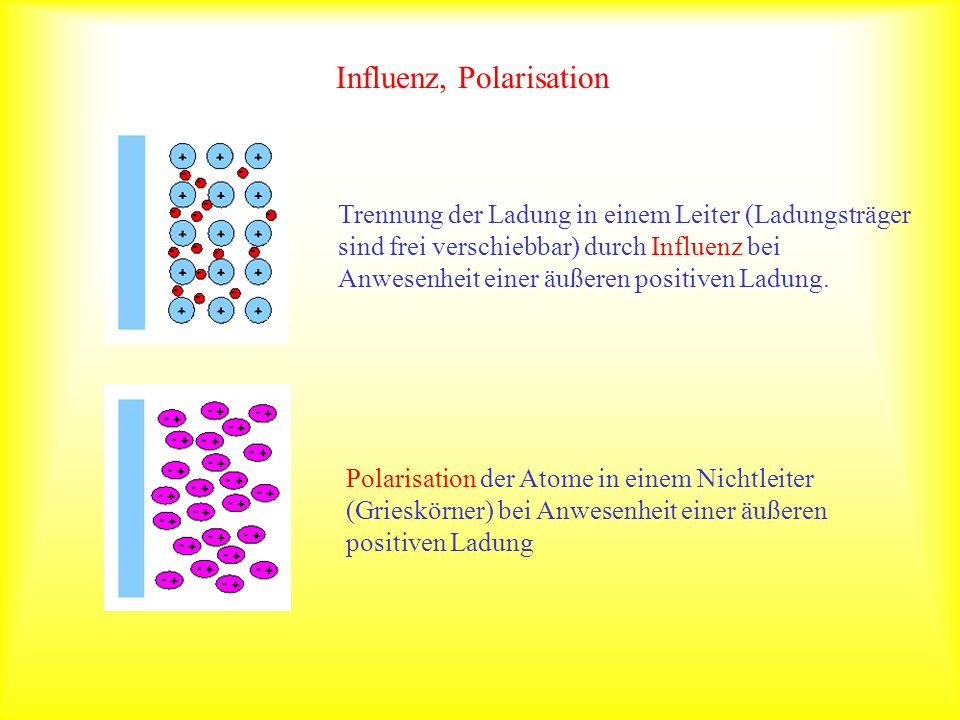 Influenz, Polarisation