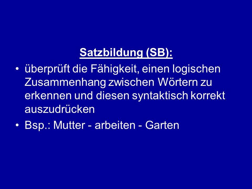 Satzbildung (SB):überprüft die Fähigkeit, einen logischen Zusammenhang zwischen Wörtern zu erkennen und diesen syntaktisch korrekt auszudrücken.